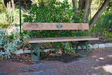 bench style 5 225x150